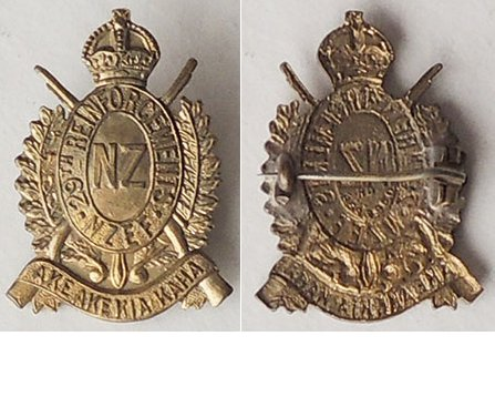 B04/145. 29th REINFORCEMENTS collar badge, collar badge, brass