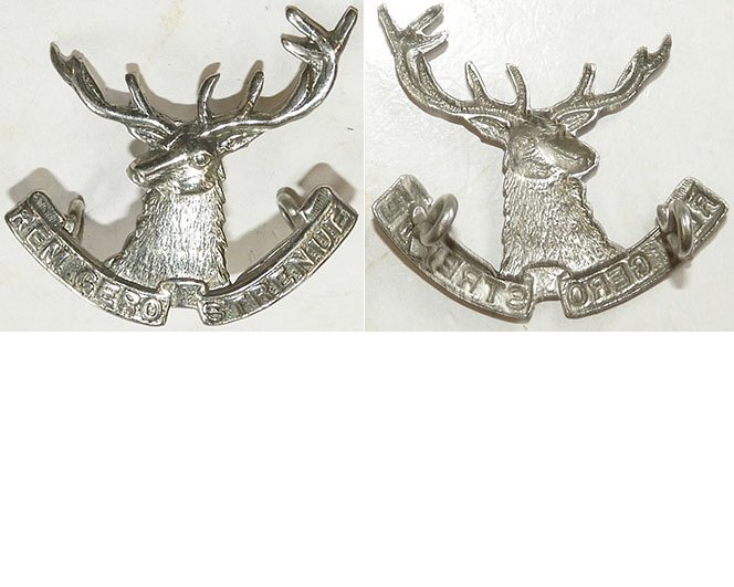 B05/068a. 10th (NELSON) MOUNTED RIFLES, chromed cap badge