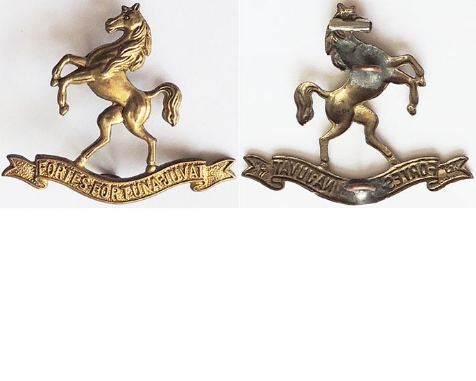 B05/062. 9th (WELLINGTON EAST COAST) MOUNTED RIFLES, cap badge