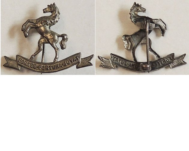 B05/065a. 9th (WELLINGTON EAST COAST) MOUNTED RIFLES left collar