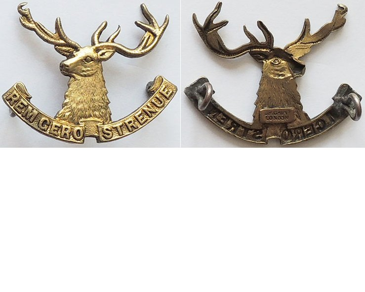 B05/068. 10th (NELSON) MOUNTED RIFLES, cap badge