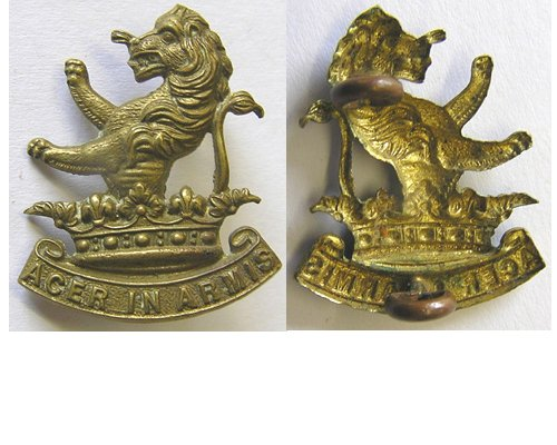B06/074. 7th (WELLINGTON W.C. RIFLES) REGt left collar, brass