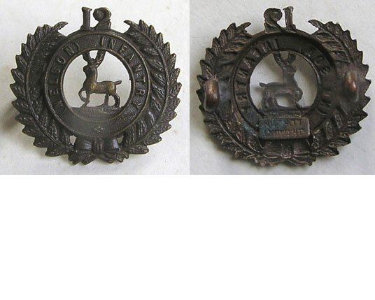 B06/117. 12th (NELSON) REGIMENT bronzed left collar badge
