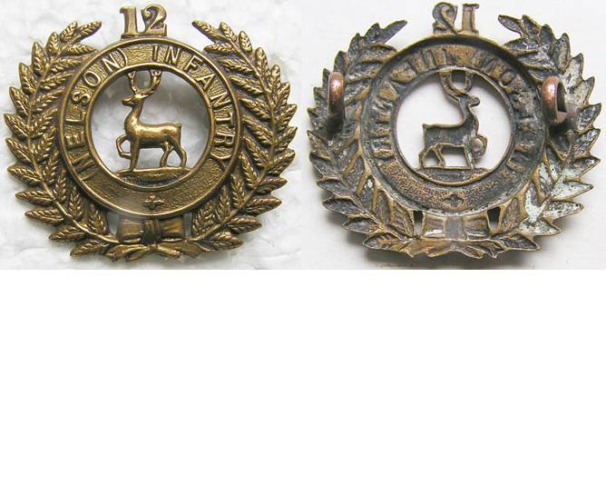 B06/113. 12th (NELSON) REGIMENT brass cap badge