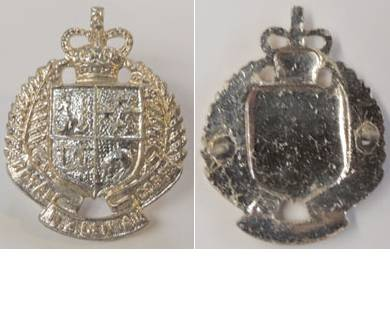 B08/129. ROYAL N.Z. DENTAL CORPS, anodised collar badge