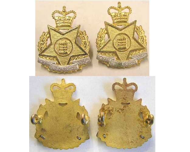 B08/251. ROYAL NZ NURSING CORPS, pair of gilt/silver collars