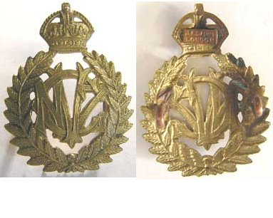B08/362. NZ VETERINARY CORPS brass cap badge, fern leaf wreath