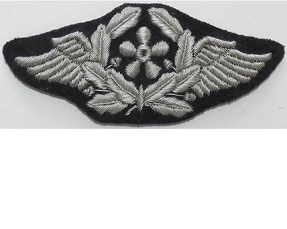 GC2454. LUFTWAFFE AIRCRAFT TECHNICAL PERSONNEL sleeve patch