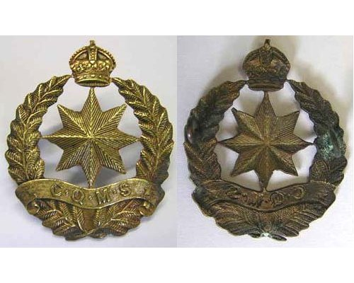 B04/256. CAMP QUARTERMASTER STORES cap badge